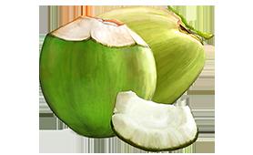 Coconut Tender