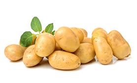 Potato New